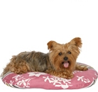 Мягкие места для собак