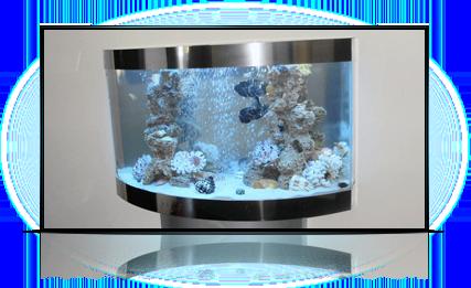 Подвесной аквариум.