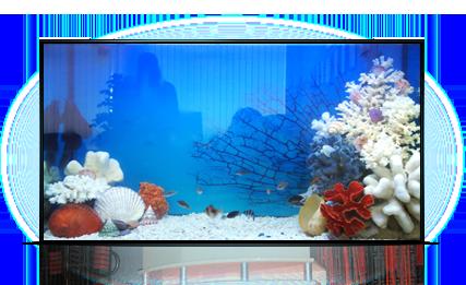 Аквариум - имитация моря, 250 л.
