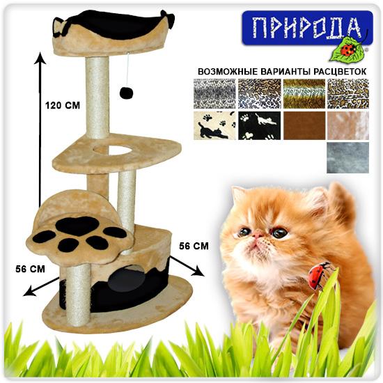 Когтеточка для кота с размерами