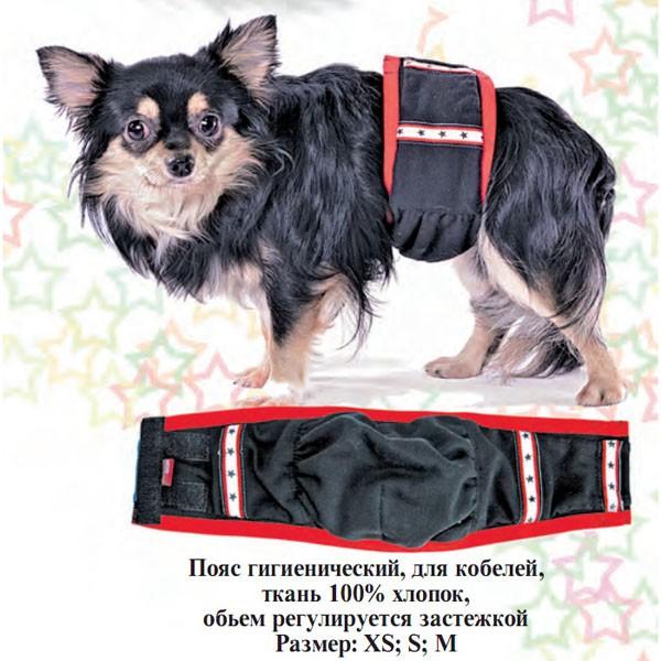 Подгузник для собак своими руками