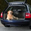 Trixie решётка в багажник автомобиля