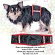 Pet Fashion пояс гигиенический для кобелей XS