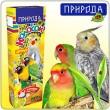 Колосок Цитрус для средних попугаев