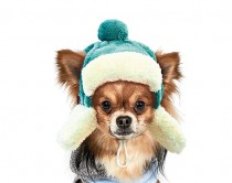 Фото 1 - Pet Fashion Шапка зимняя Ушанка S