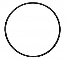 Фото 1 - SunSun уплотнительное кольцо для CPF 20000-50000