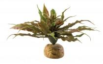 Фото 1 - Exo Terra Star Cactus