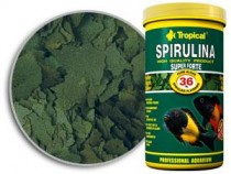 Фото 1 - Tropical Super Spirulina Forte,  5000 мл