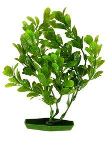 Пластиковые растения