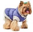 Pet Fashion Жилет Бонжур S