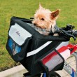 Trixie сумка - переноска для велосипеда 38 × 25 × 25 см